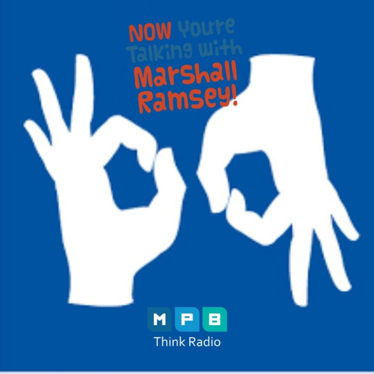 cover art for Now You're Talking w/ Marshall Ramsey   Sign language interpreters serving community during COVID-19 crisis