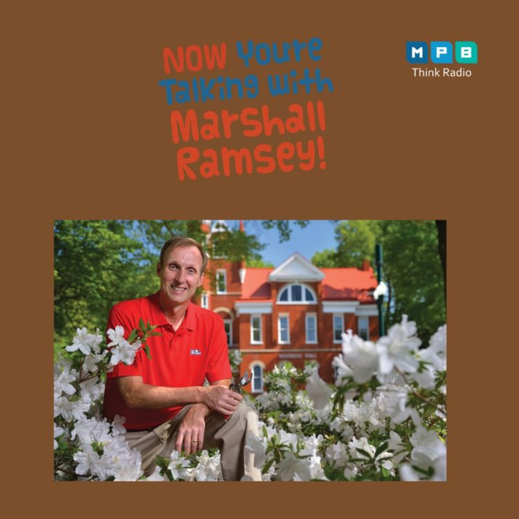 cover art for Now You're Talking w/ Marshall Ramsey | Jeff McManus