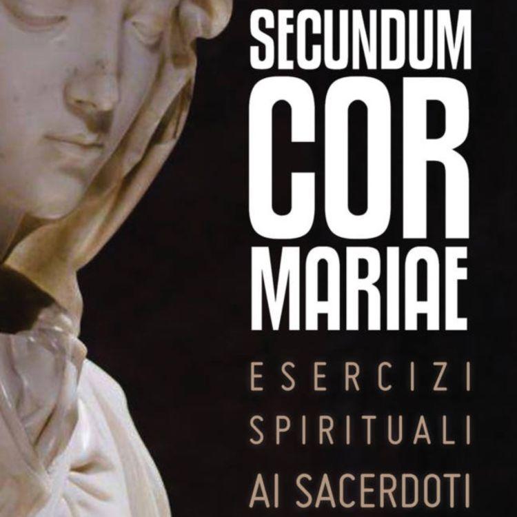 cover art for Il dono del celibato nel dono del sacerdozio
