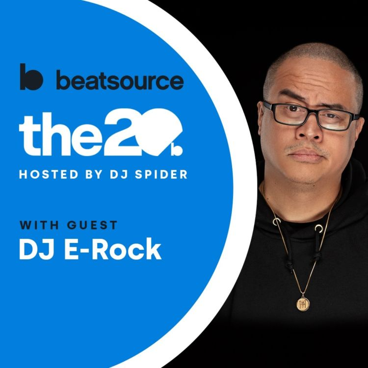 cover art for DJ E-Rock: power of Twitch, diversifying your income