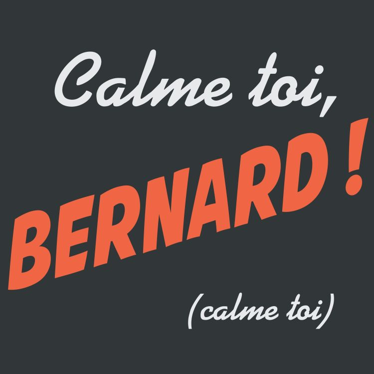"cover art for Calme-toi Bernard ""Michel Couscous fait du stand-up"""