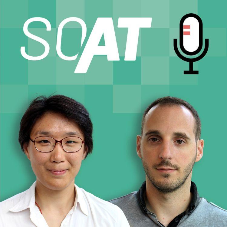 cover art for SOAT - C'est quoi une bonne mission PO ? Avec Dominique HAK & Benoît-Xavier PACE