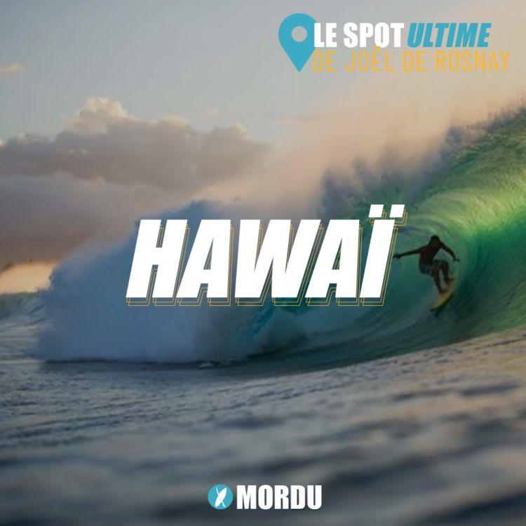 cover art for HAWAII  : Le Spot Ultime de Joel de Rosnay