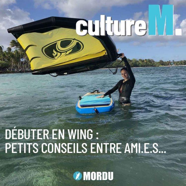 cover art for Culture M #4 - Débuter en wing : petits conseils entre ami.e.s...