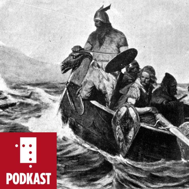 cover art for Konstruksjonen av Norden: Kjønnsroller i vikingtida