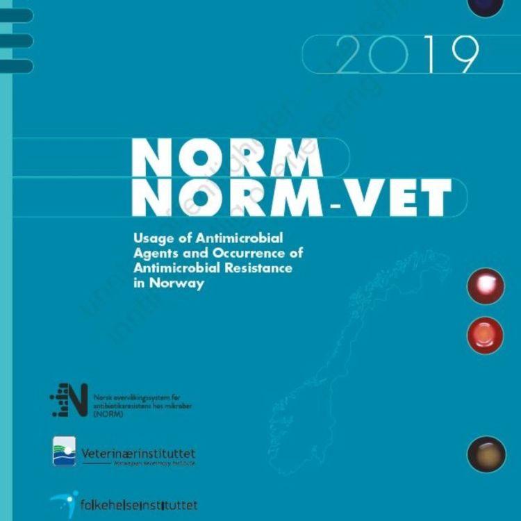 cover art for Årlig status for antibiotikaresistens og forbruk i Norge