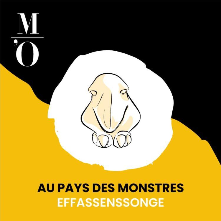 cover art for L'Effassensonge, l'éponge à tracas