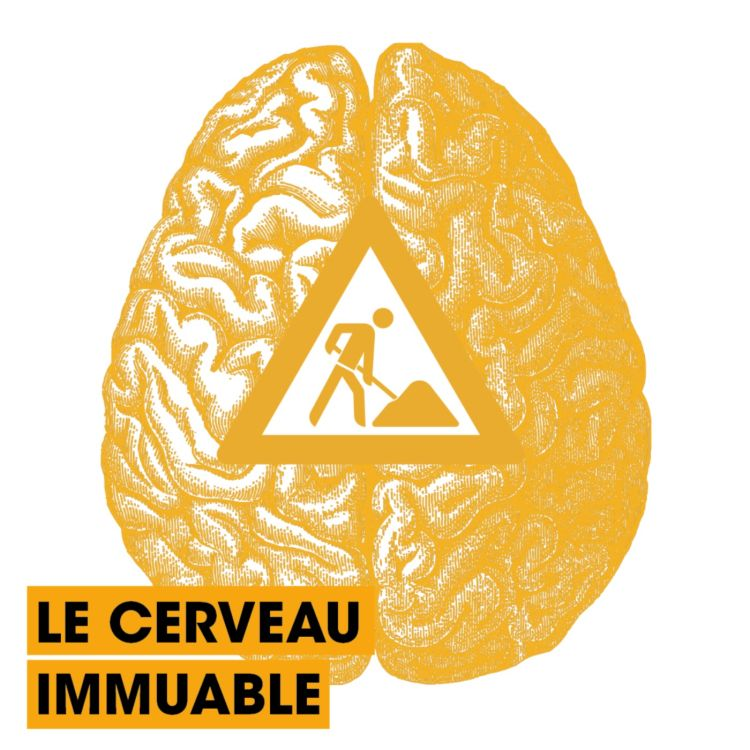 cover art for [RÉFUTATIONS] Le cerveau immuable