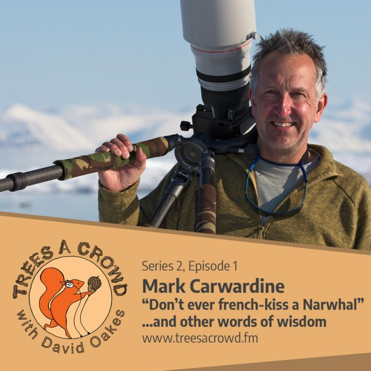 "cover art for Mark Carwardine: ""Don't ever french-kiss a Narwhal""... and other words of wisdom"