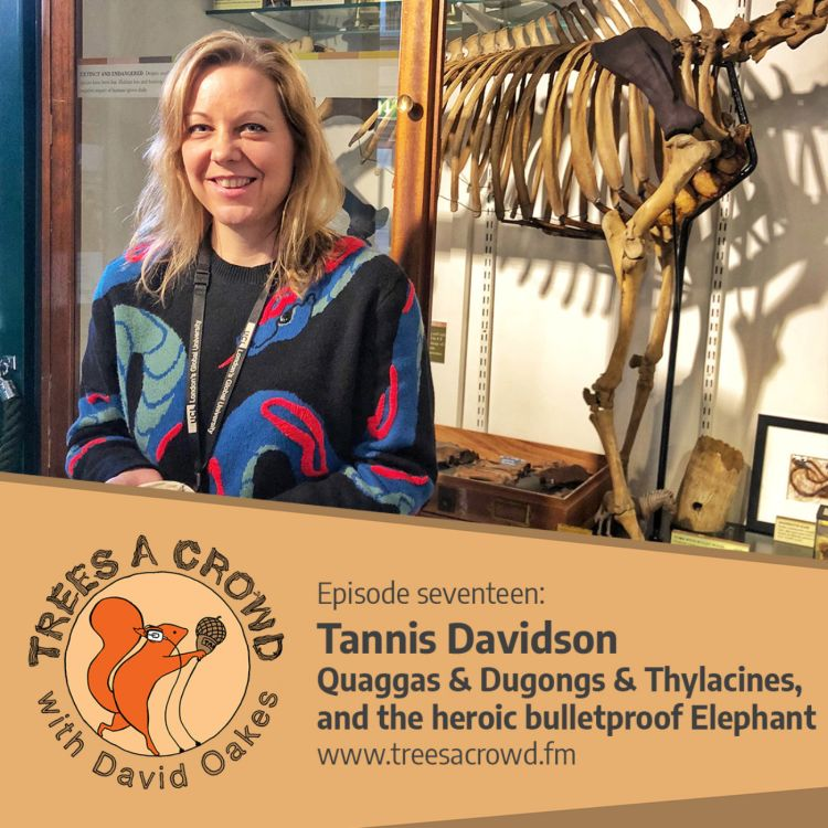cover art for Tannis Davidson: Bulletproof elephants, 3D-printing a quagga and cloning thylacines