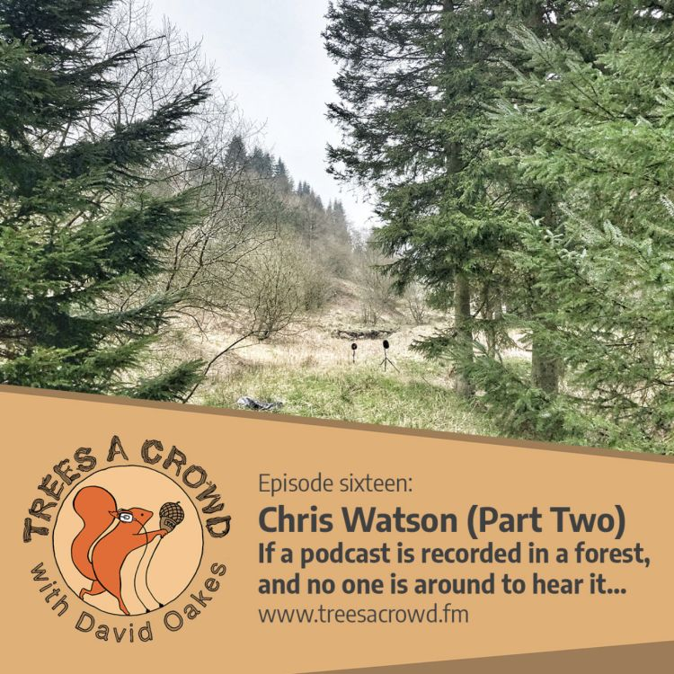 cover art for Chris Watson (Part Two): If a podcast is recorded in a forest, and no one is around to hear it…