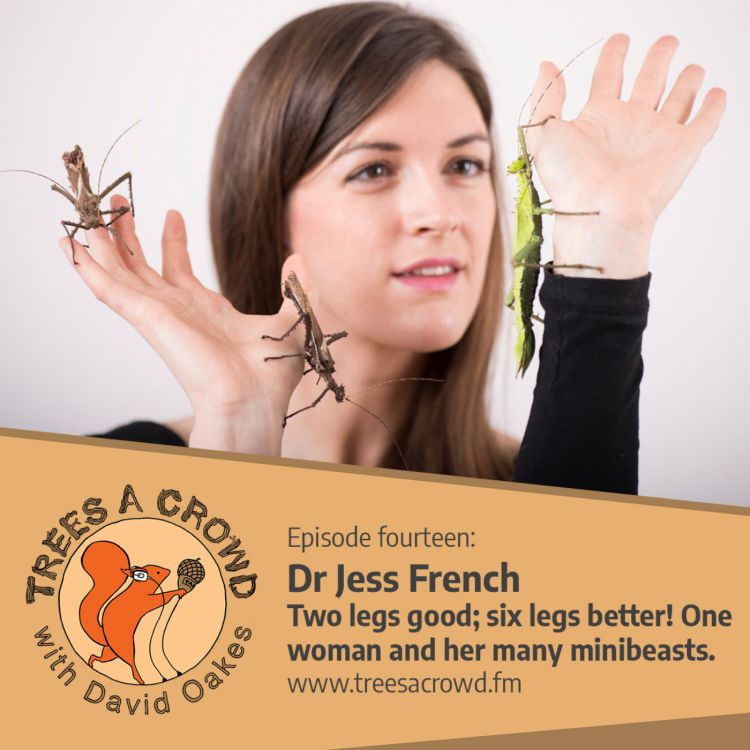 cover art for Dr Jess French: Two legs, good – six legs, better! One woman and her many minibeasts