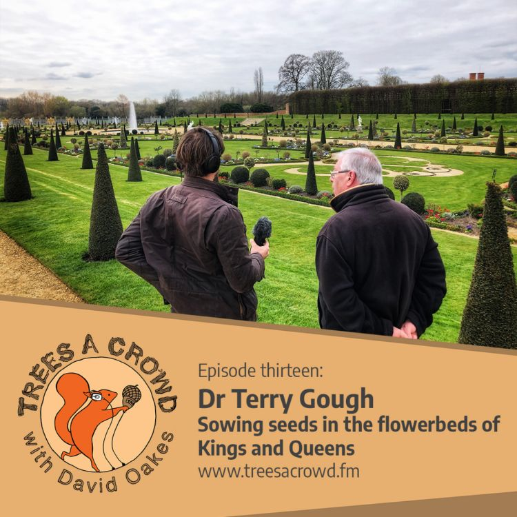 cover art for Dr Terry Gough: Sowing seeds in the flowerbeds of Kings and Queens