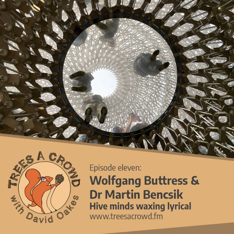 cover art for Wolfgang Buttress and Dr Martin Bencsik:  Hive minds waxing lyrical