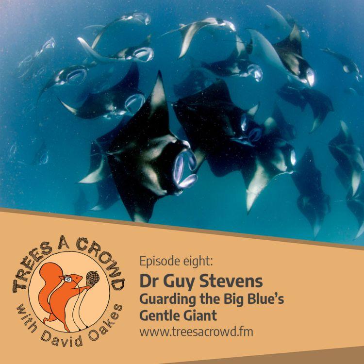 cover art for Dr Guy Stevens: Guarding the Big Blue's Gentle Giant