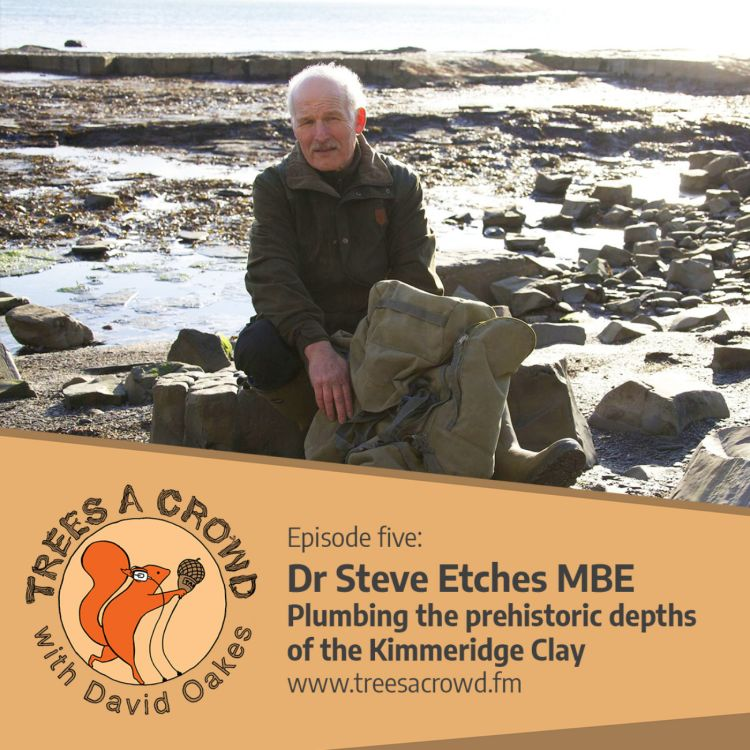 cover art for Dr Steve Etches: Plumbing the prehistoric depths of the Kimmeridge Clay