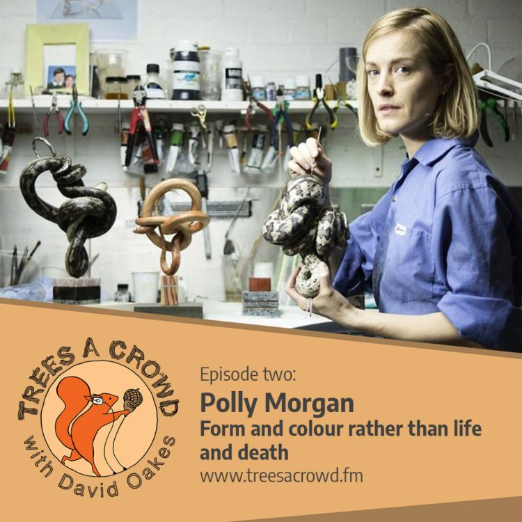 cover art for Polly Morgan: Form and colour rather than life and death