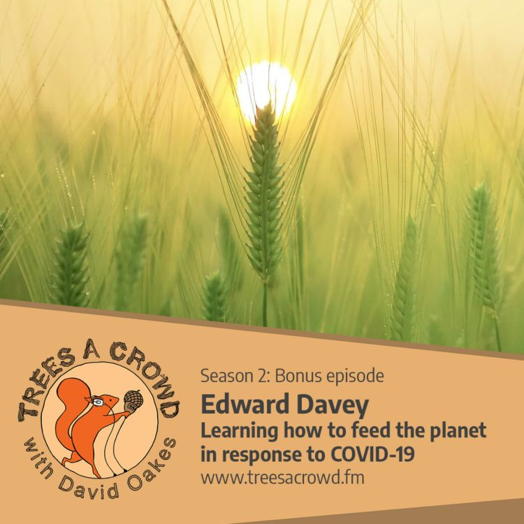 cover art for Edward Davey: Learning how to feed the planet in response to COVID-19