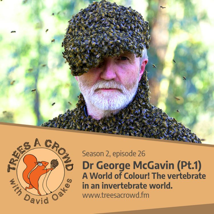 cover art for Dr George McGavin (Part One): A World of Colour! The vertebrate in an invertebrate world!