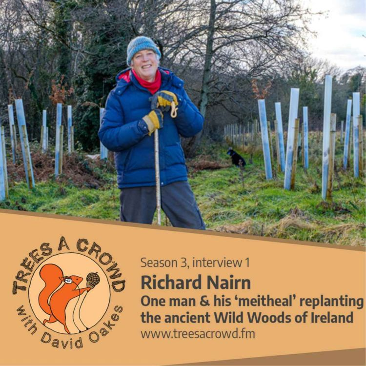 cover art for Richard Nairn: One man & his 'meitheal' replanting the ancient Wild Woods of Ireland