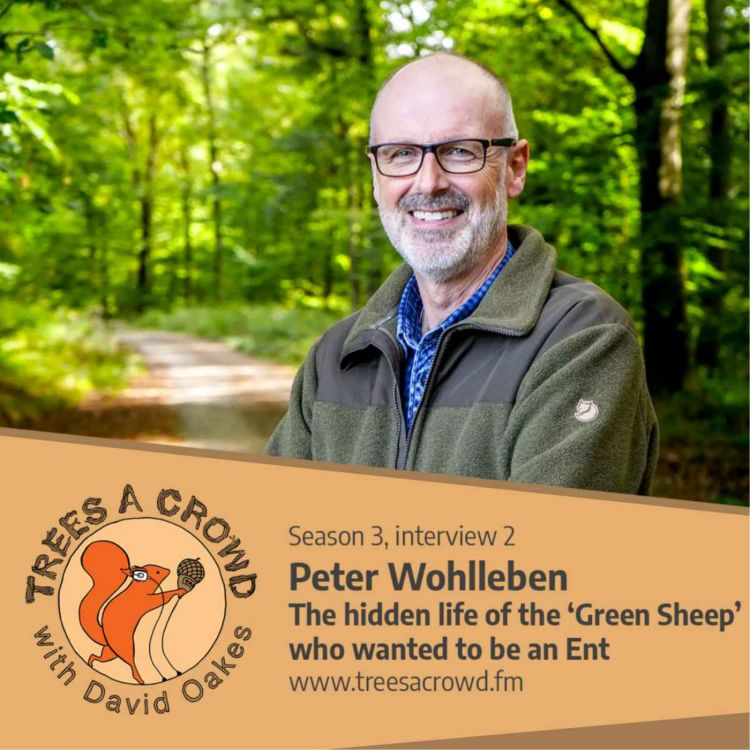 cover art for Peter Wohlleben: The hidden life of the 'Green Sheep' who wanted to become an Ent