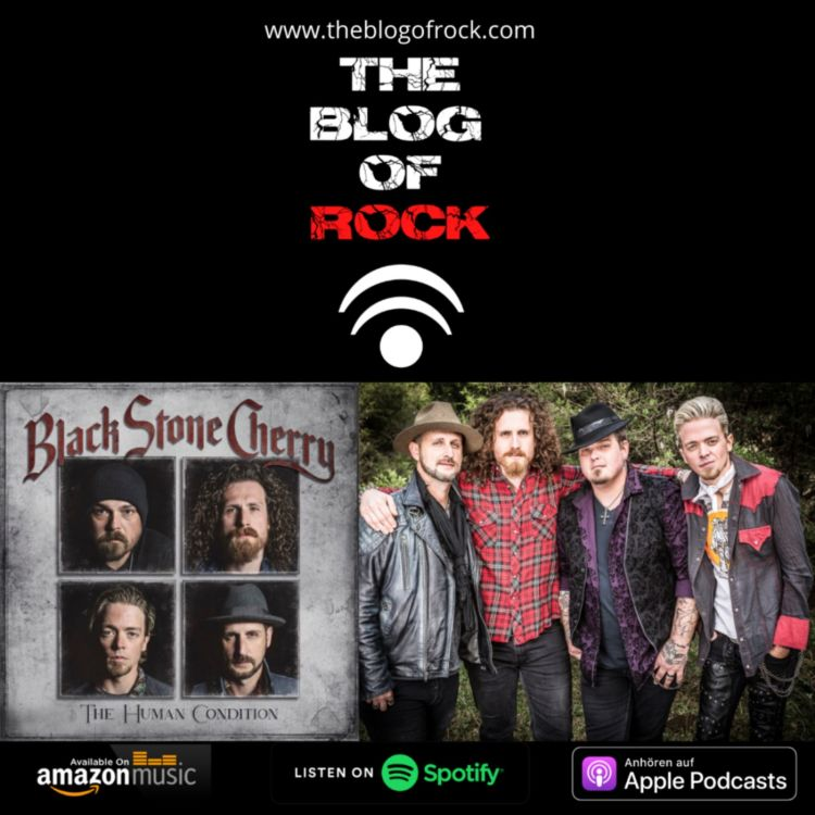 cover art for BLACK STONE CHERRY