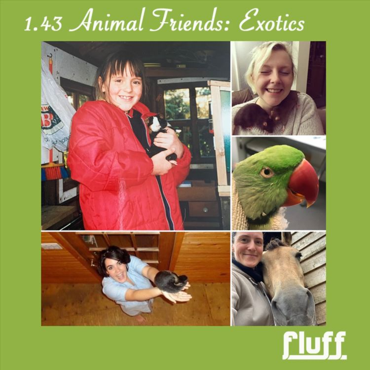 cover art for Animal Friends: Exotics