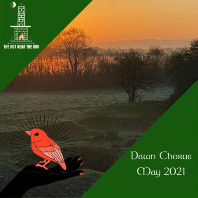 cover art for Dawn Chorus - 02 May 2021