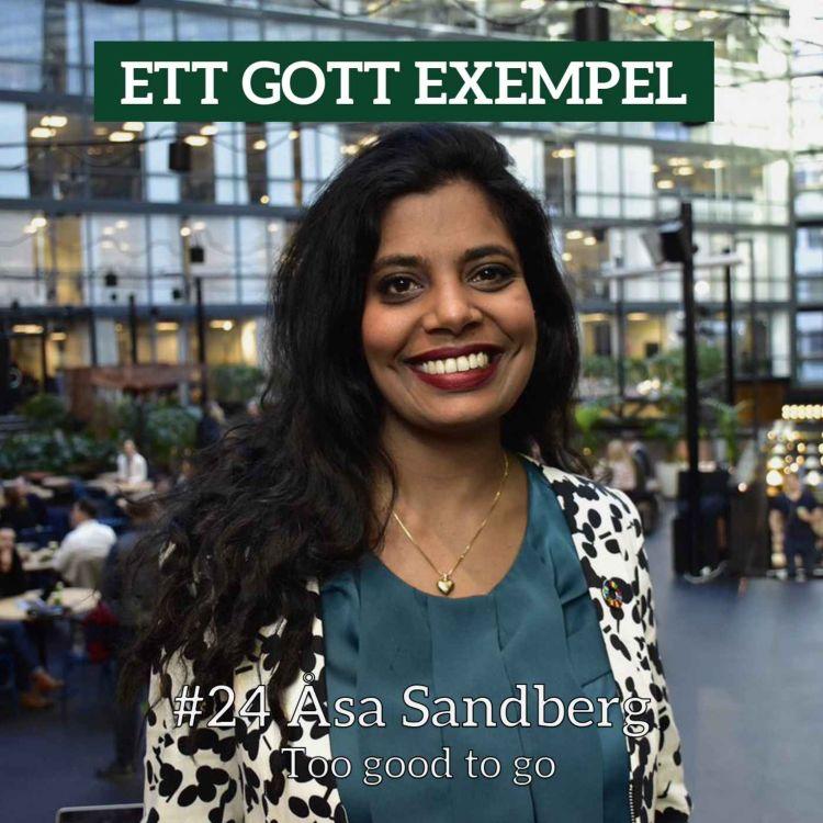 cover art for Åsa Sandberg
