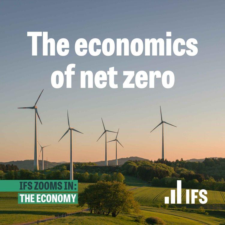 cover art for The economics of net zero