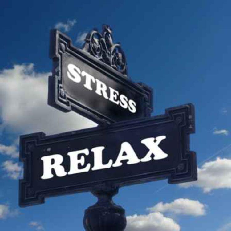 cover art for #8 5 habitudes anti-stress
