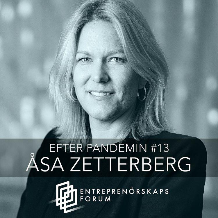 cover art for Åsa Zetterberg: Den kritiska digitala infrastrukturen