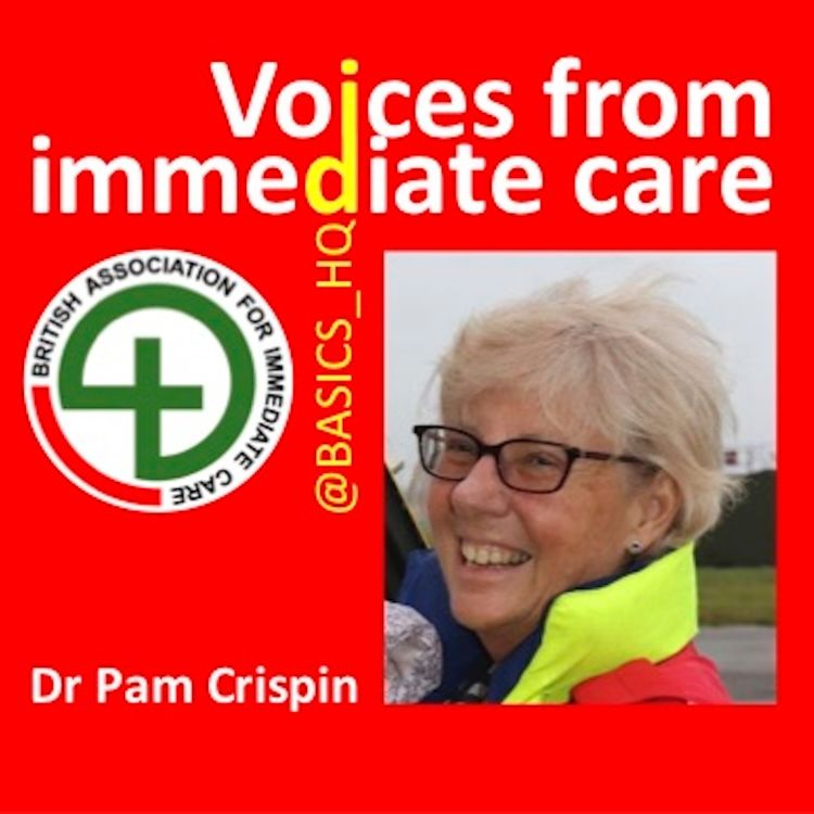 cover art for An interview with Dr Pam Crispin