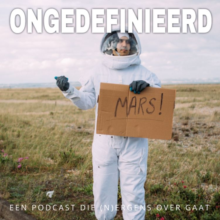 cover art for Ongedefinieerd 21 over ruimtereizen, kapotte Nest en dropshippingboefjes