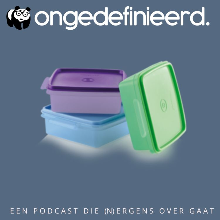 cover art for Ongedefinieerd S4 E9 over Wagile, Tupperware en Life in a Day