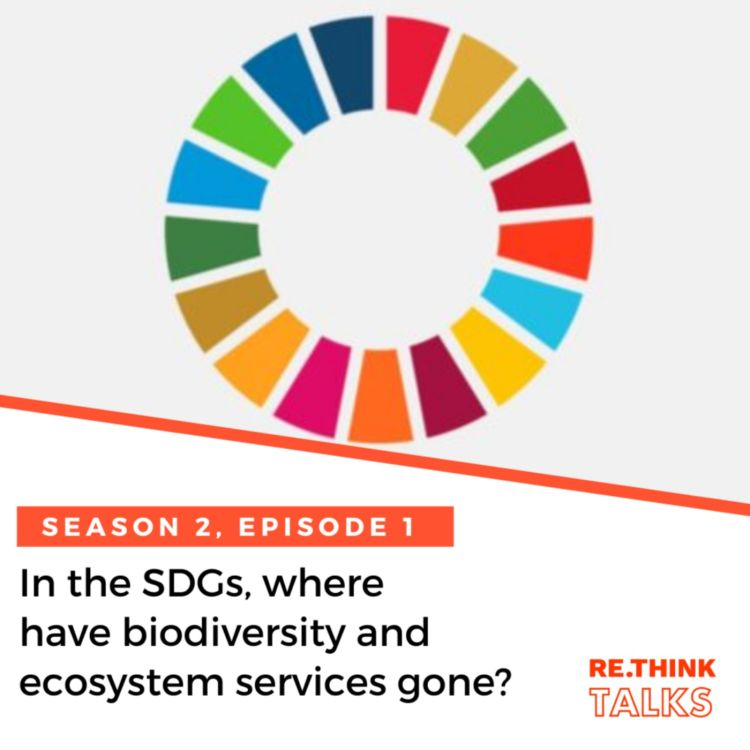 cover art for In the SDGs, where have biodiversity and ecosystem services gone?