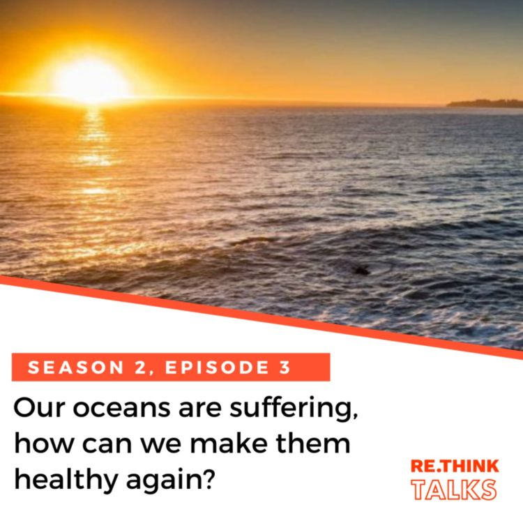 cover art for Our oceans are suffering, how can we make them healthy again?