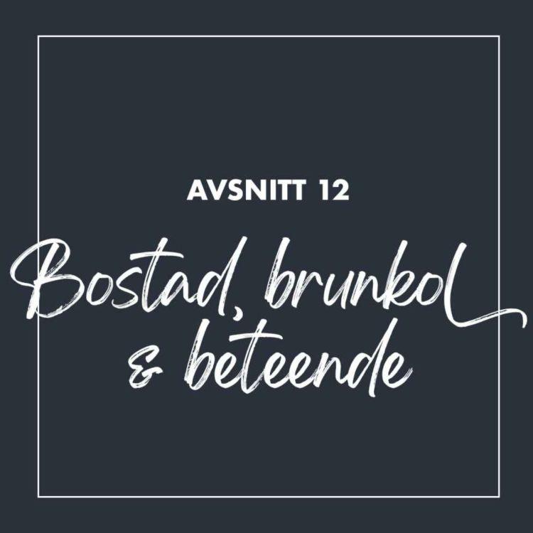 cover art for #12 Bostad, brunkol & beteende