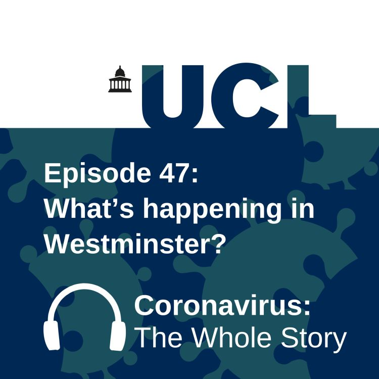 cover art for What's happening in Westminster?