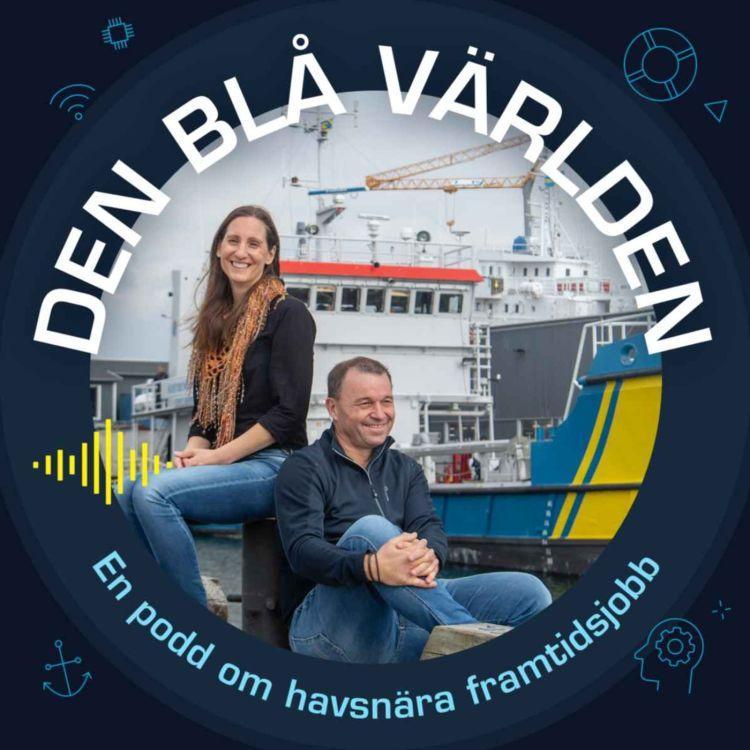 cover art for Ett varv på en Ö