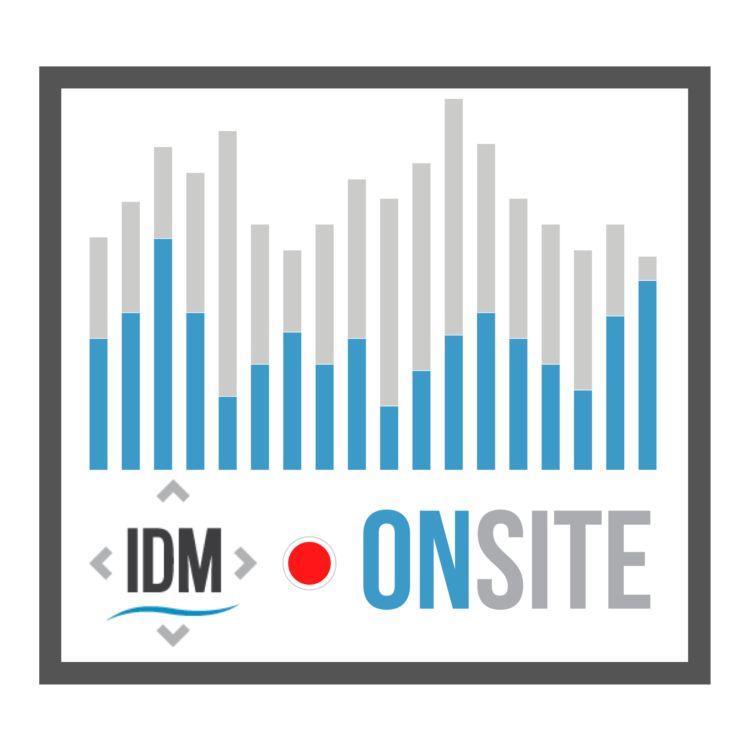 cover art for IDMonSite - Renata Mieńkowska-Norkiene