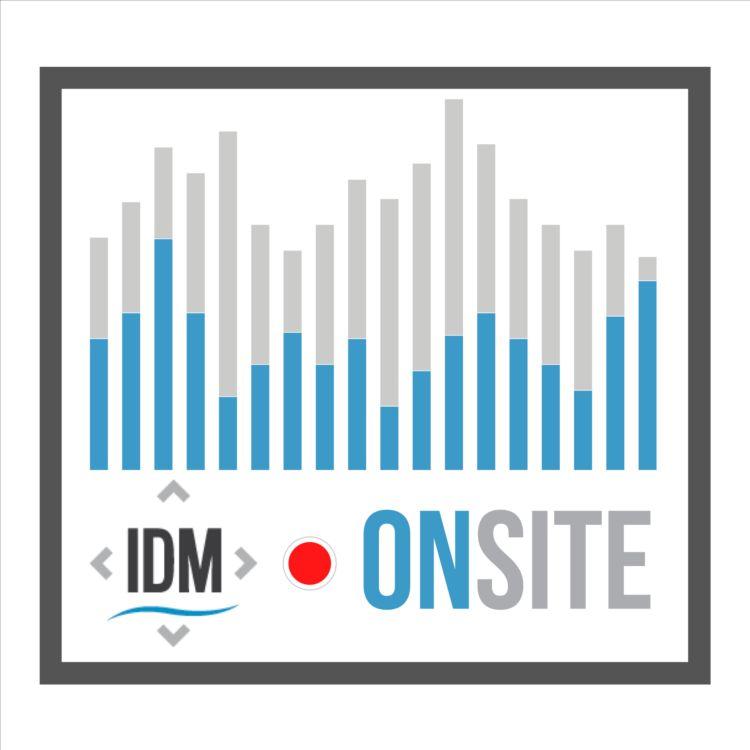 cover art for IDMonSite - Sergiu Musteață