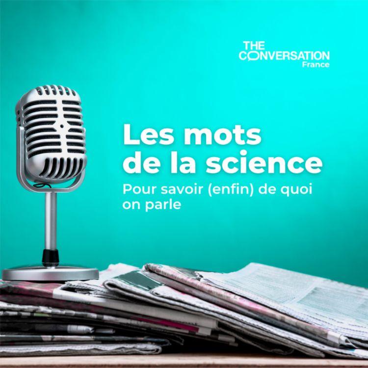 cover art for « M » comme modélisation