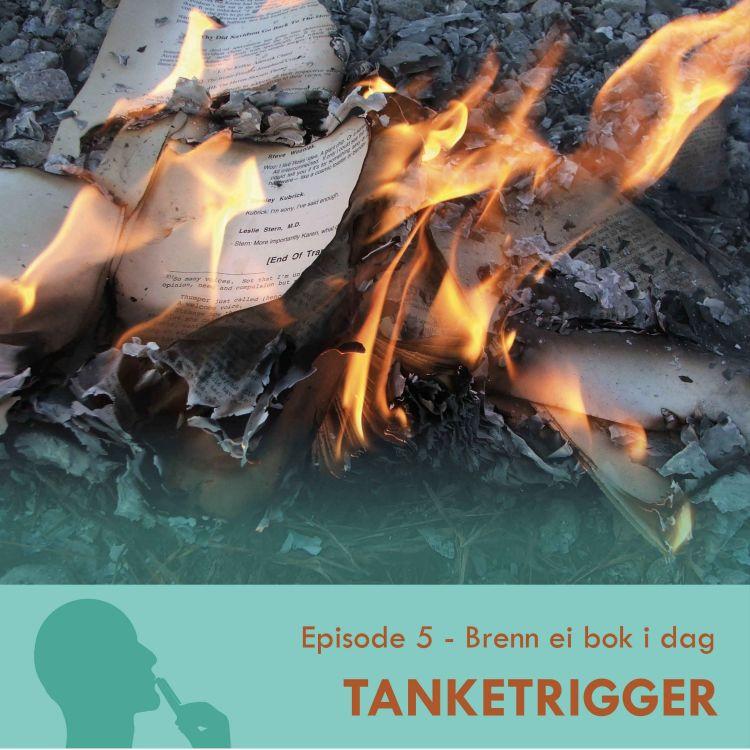 cover art for TT-05: Brenn ei bok i dag