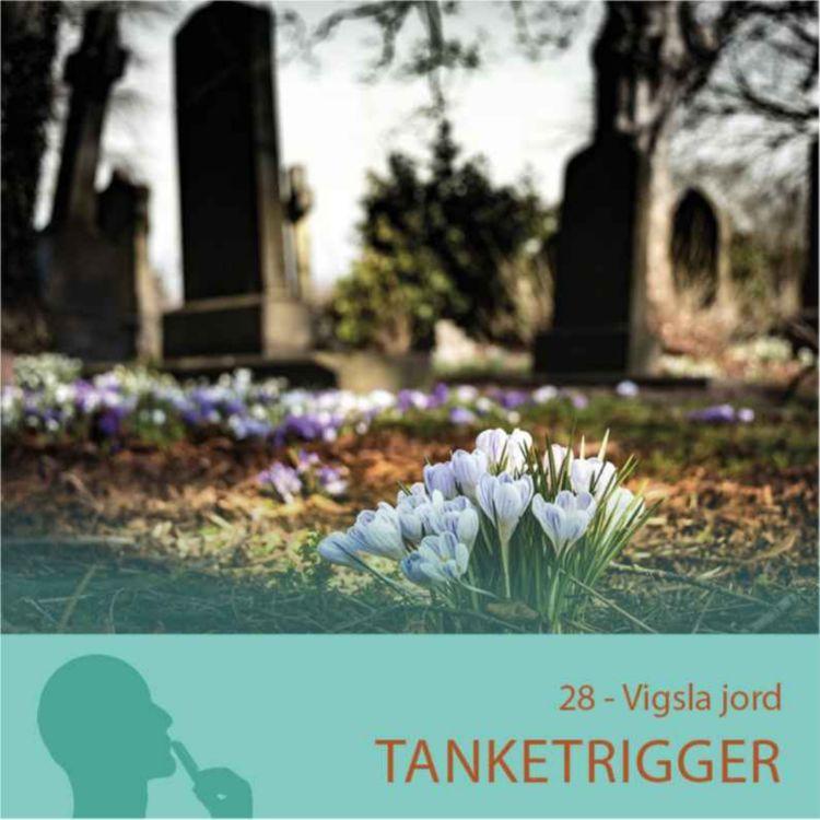 cover art for Vigsla jord