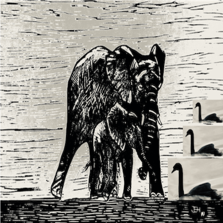 cover art for Black Elephants and Black Swans