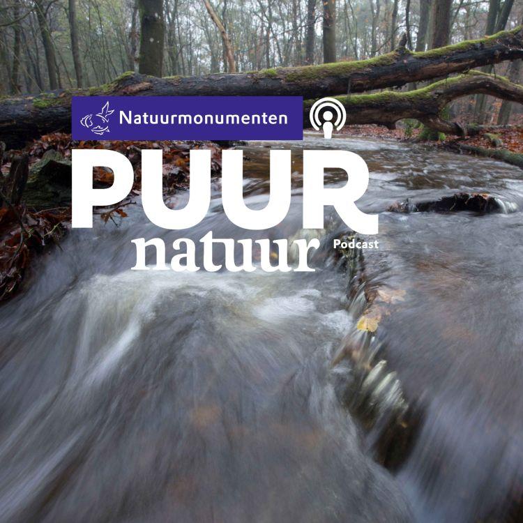 cover art for Puur Natuur: Michiel Schaap en Corine Geujen over de droogte in Nederland