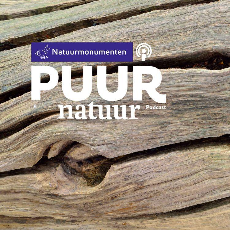 cover art for Puur Natuur: Harald van den Akker en Franz Ziegler over het gebruik van hout uit eigen bos in de nederzetting op Marker Wadden