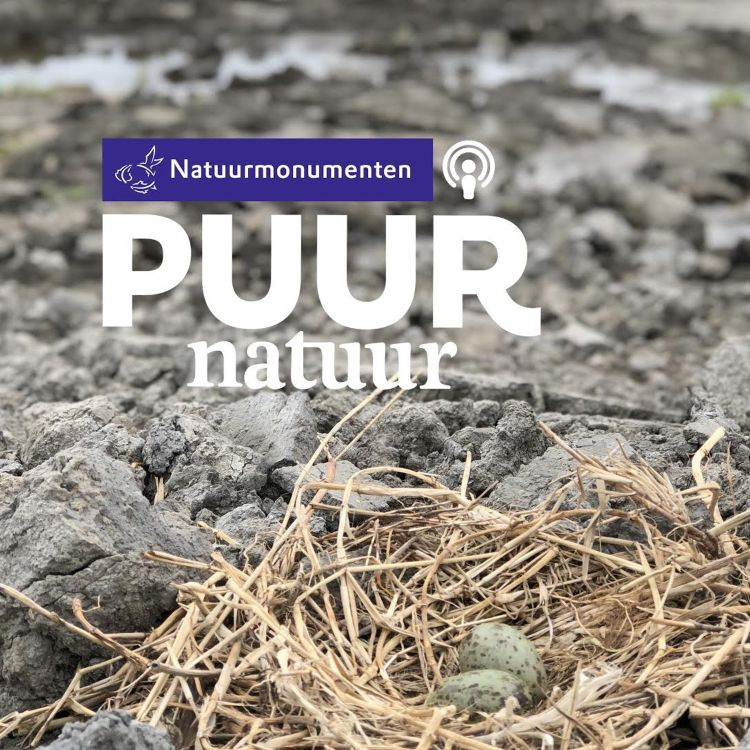 cover art for Puur Natuur: André Donker over de Marker Wadden