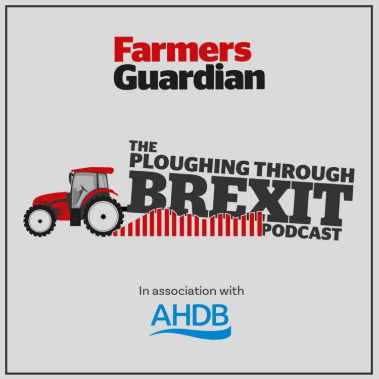 cover art for What does the Agricultural Transition Plan mean for post-Brexit farming?